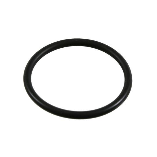 21065 - Seal Ring
